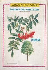 Verso de Rin Tin Tin & Rusty (2e série) -124- Rintintin vedette de cirque