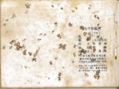 Verso de Tintin (en chinois) -132PIR- Les 7 Boules de cristal (Deuxième partie)