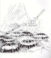 Verso de (AUT) Boucq -1992- Cannes