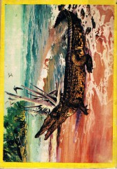 Verso de Rin Tin Tin & Rusty (2e série) -115- Le prix du déshonneur
