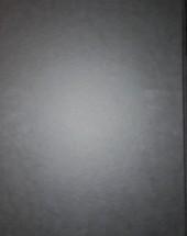 Verso de Spirou et Fantasio -55TT- La colère du Marsupilami