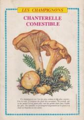 Verso de Rin Tin Tin & Rusty (2e série) -131- On recherche rip masters