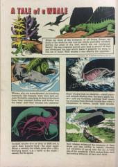 Verso de Sea Hunt (Dell - 1960) -5- Sea Hunt
