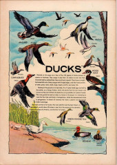 Verso de Four Color Comics (Dell - 1942) -1251- Everything's Ducky
