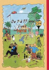 Verso de Tintin - Pastiches, parodies & pirates -a- Tintin dans le golfe