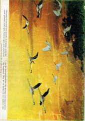 Verso de Tarzan (Dell - 1948) -33- (sans titre)