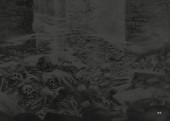 Verso de (AUT) Springer - Mythes