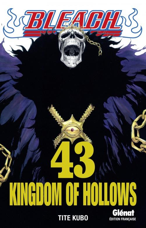 Couverture de Bleach -43- Kingdom of Hollows