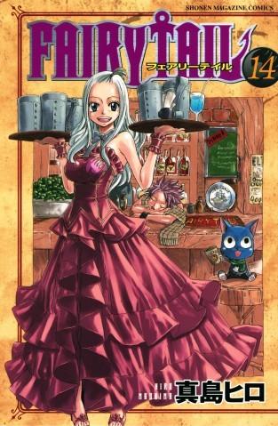 Couverture de Fairy Tail (en japonais) -14- Volume 14