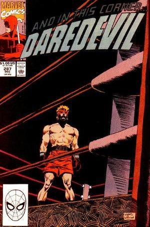 Couverture de Daredevil Vol. 1 (Marvel - 1964) -287- The fighter