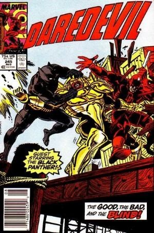 Couverture de Daredevil Vol. 1 (Marvel - 1964) -245- Burn!