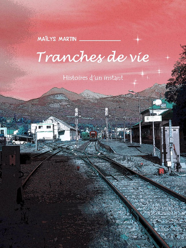 Couverture de Tranches de vie (Martin) - Histoires d'un instant