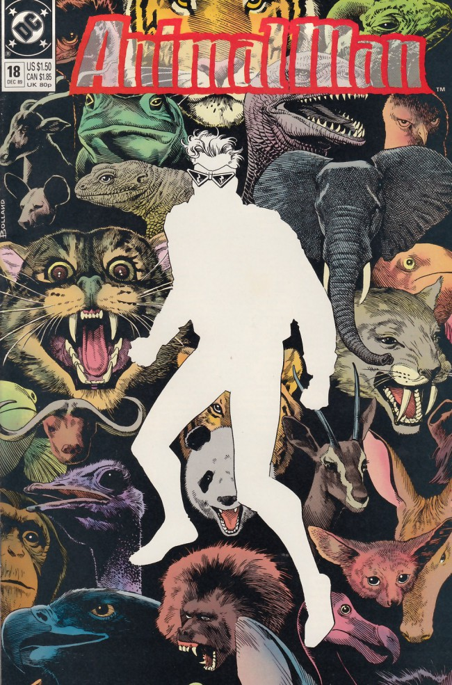 Couverture de Animal Man Vol.1 (DC comics - 1988) -18- At Play in the Fields of the Lord