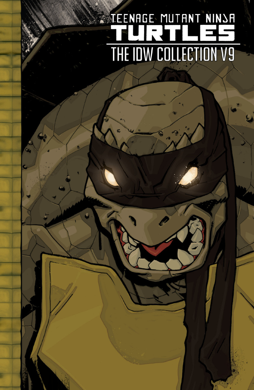 Couverture de Teenage Mutant Ninja Turtles (IDW collection) -9- TMNT IDW Collection #9