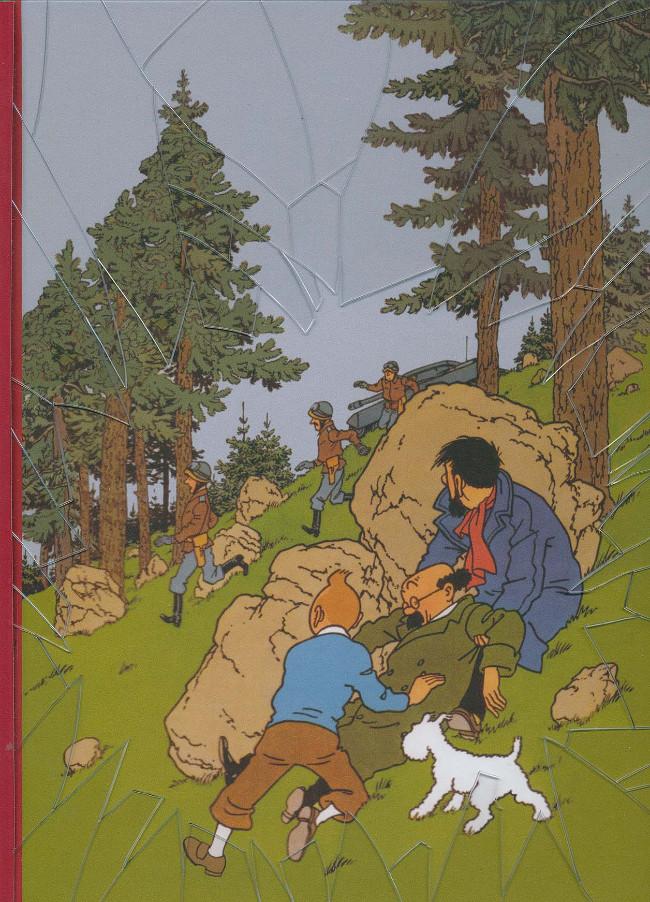 Couverture de Tintin - Pastiches, parodies & pirates -49PIR- L'affaire Tournesol