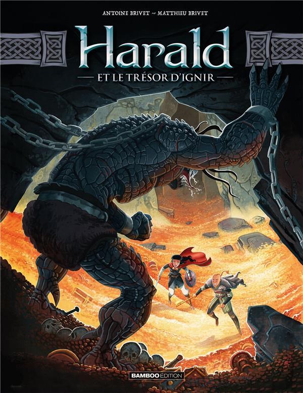 Couverture de Harald et le trésor d'Ignir -2- Tome 2