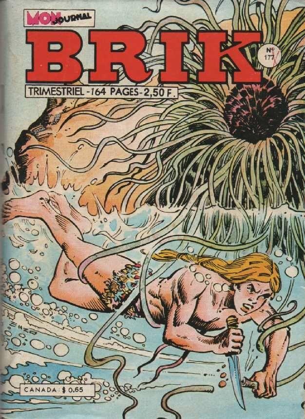Couverture de Brik (Mon journal) -177- Fou ! Fou ! Fou !