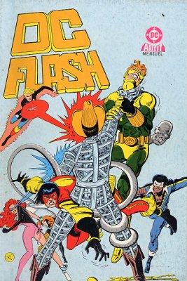 Couverture de DC Flash -14- Firestorm en danger