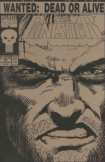 Couverture de Punisher Vol.02 (Marvel comics - 1987) (The) -57- Final days part 5 : america's most hunted