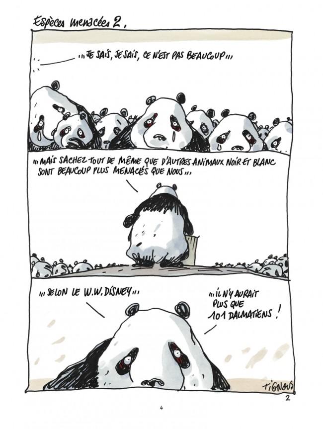 Dans Les Forêts De Bambous Pandas Dans La Brume