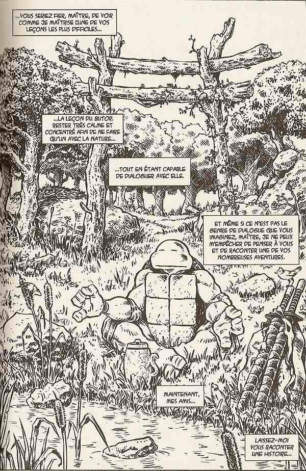 Tmnt chroniques des tortues ninja bd informations cotes - Le rat des tortue ninja ...